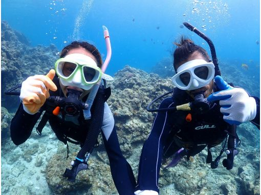 1 group charter ☆ Okinawa Prefecture Blue Cave Experience Diving! Same-day reservation OK! GoPro Photo Image & Feeding Free! Free towels and sandals! Boarding fee included until September 30の紹介画像