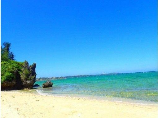 【沖縄ビーチダイビング】8歳から参加可!初めてのダイビングにオススメ 1組完全貸切 写真撮影付 エサやり無料 バスタオルサンダル無料レンタルの紹介画像