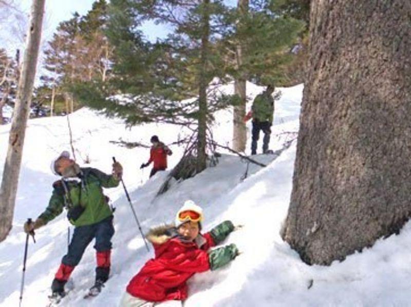 【群馬・万座温泉】万座温泉弁天池、針葉樹巨木の森 カラマツ天然母樹林でスノーシュー体験の紹介画像