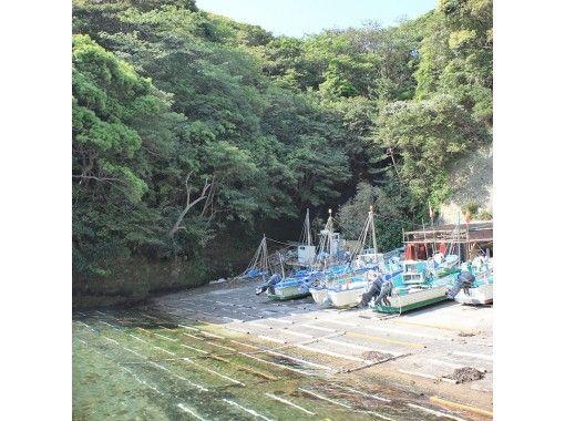 【千葉・勝浦】プライベートツアー・海と山の息吹を感じよう!南房総の自然や絶景を満喫する旅