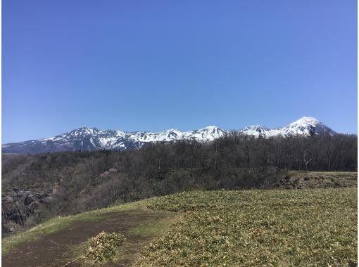 【北海道・知床】森歩き 絶景プラン 【無料送迎付き