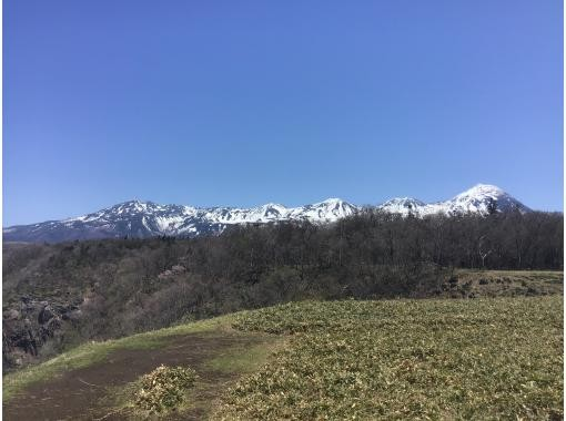 【北海道・知床】森歩き「絶景プラン」無料送迎付き!