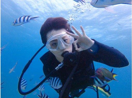 カメラレンタル無料!海ガメに逢える!?初心者でも安心の体験ダイビング(国立指定公園慶良間諸島コース)