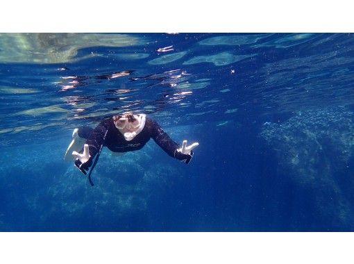 【愛媛・松山】無料送迎付!魚とサンゴに囲まれる愛南町の海でシュノーケリング