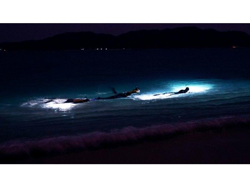 海 夜光虫
