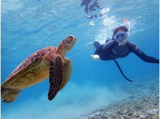 《コロナ対策適用プラン》【スキンダイビング】海の中を自由に泳ごう♪3密回避の完全貸切制だから安全・安心!写真+動画プレゼント!レッスン付き!