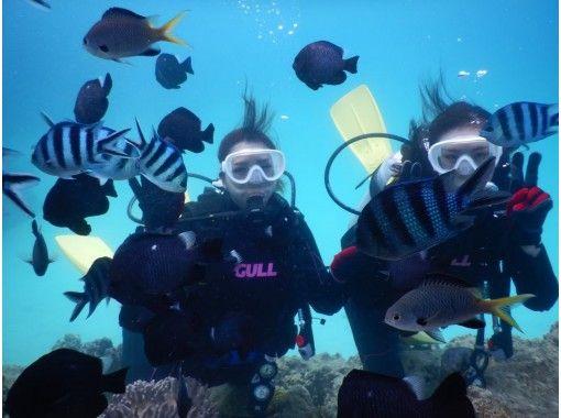 [沖縄本部區域]體驗深潛/ SUP套餐路線上午一天一套下午限定套の紹介画像
