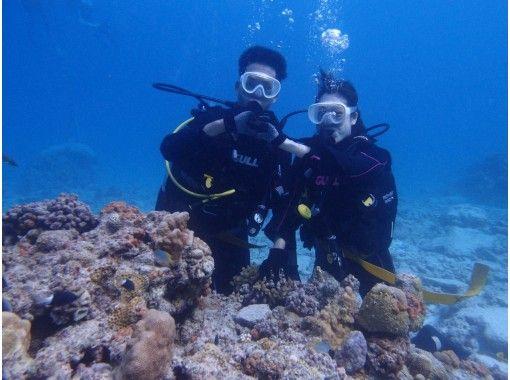 [沖縄本部]第一次安全!海灘體驗深潛1上午1組1下午組の紹介画像
