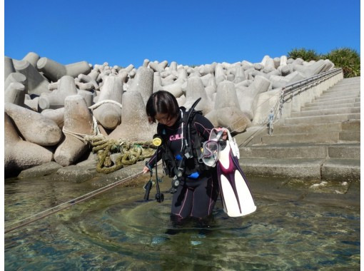 [沖縄本部區域]沙灘迷深潛(2次潛水)僅限一套の紹介画像