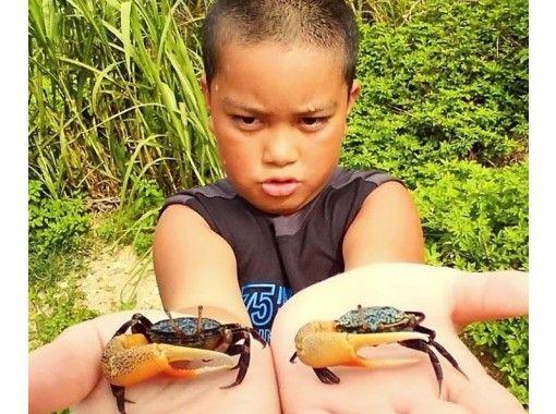 【沖縄・小浜島】送迎付!ガイドと一緒に小浜島(かふぬ島)を探検しよう!