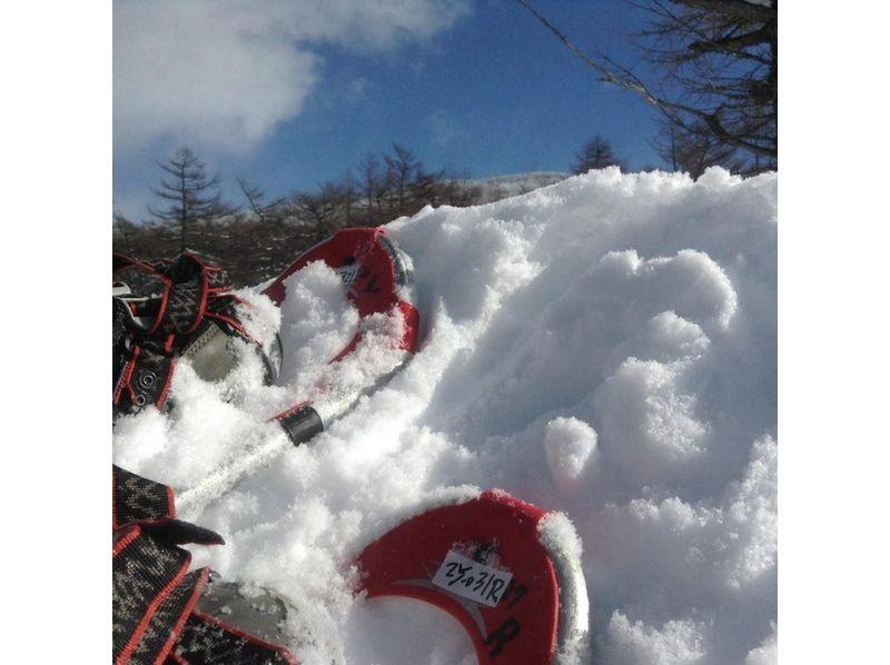 【長野・高峰高原】冬の八ヶ岳・富士山を望む絶景スノーシュー!水ノ塔山スノートレッキングの紹介画像