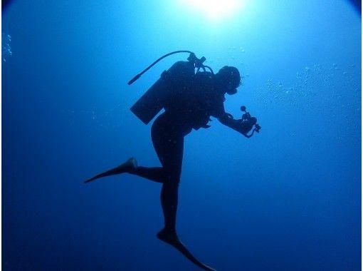 【静岡・伊豆海洋公園】完全少人数制・写真プレゼント!世界ジオパーク・地球を潜る!体験ダイビング 午前