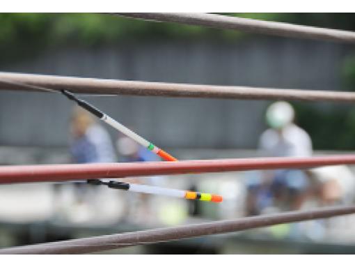 【和歌山県岩出市】つりぼりで「コイ釣り!」初心者から上級者まで楽しめます♪手ぶらでOK★  4時間まで2,000円の紹介画像