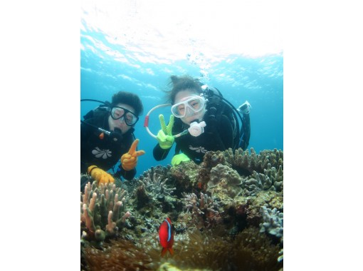 【沖縄・本部】完全貸切制!水中思い出写真付き♪ビーチ体験ダイビング