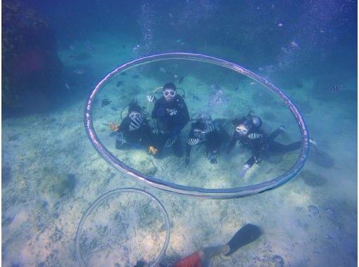 【沖縄・本部町】ガイド貸切のボート体験ダイビング!初心者大歓迎!写真動画データもその場でプレゼント♪の紹介画像