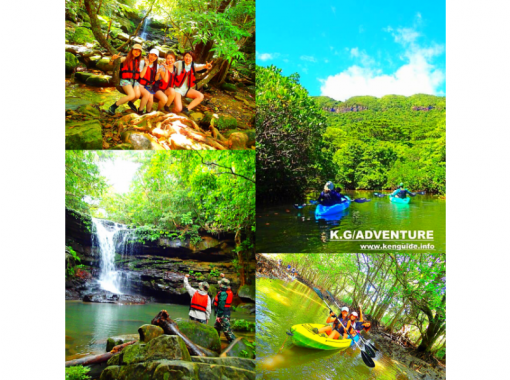 [World Heritage Iriomote Island] Summer popular waterfall play! Mangrove canoe x unexplored power spot tour x canyoning [tour photo free gift]の紹介画像