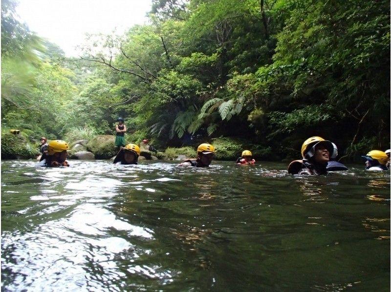 【沖縄・西表島】マングローブの川カヌー&キャニオ二ング(1日コース)の紹介画像