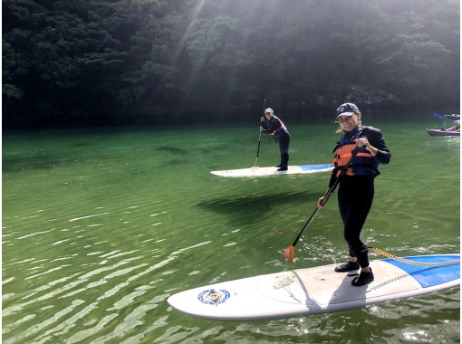 [Kagoshima / Yakushima] Regional common coupon dealers welcome one person / beginner ♪ Easy SUP experience before returning ♪ (half-day morning course)の紹介画像