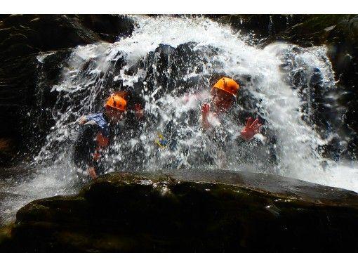 1組限定貸切り【沖縄本島・北部】ジュラシックワールドの世界「やんばる」ジャングル冒険アドベンチャー!写真サービス有