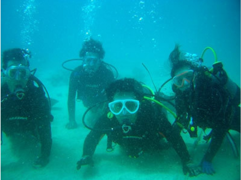【鹿児島・奄美大島】体験ダイビング(学生割引プラン)の紹介画像