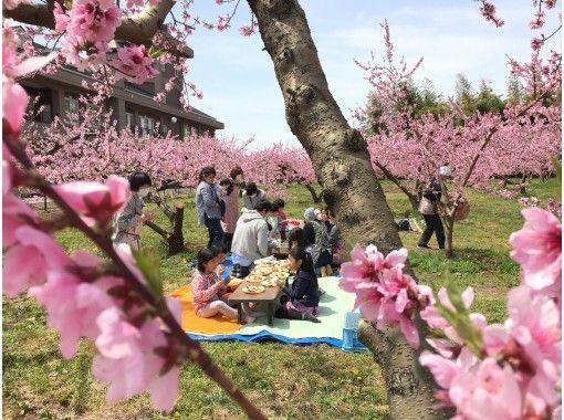 畑でピクニック 農家で過ごす休日 貸し切り