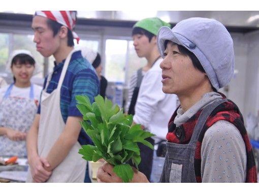 [沖縄護]沖縄烹飪經驗-沖縄家庭烹飪和甜點製作!手工參與吧!の紹介画像