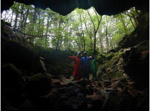 【山梨県・ケイビング・コロナ対策実施中!】樹海の真実を探る旅/神秘的森・青木ヶ原樹海散策&溶岩洞窟探検