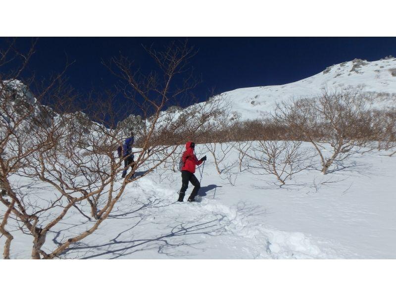【駒ヶ岳・千畳敷カール】白銀の世界!スノーシュー体験の紹介画像
