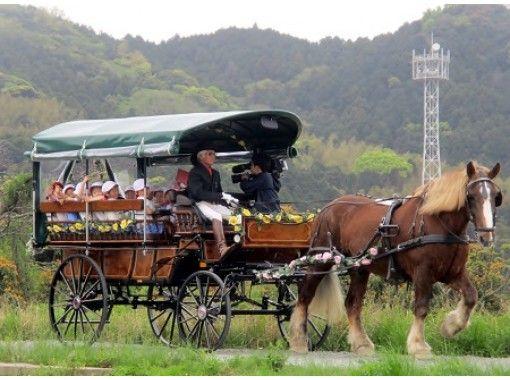 【福岡県・福津市】ふくつ古墳馬車を独占して楽しめるプレミアム古墳ツアー(約80分)観光ガイド同乗