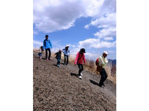[Mt. Asama, Nagano] A refreshing mountain walk! Exquisite outdoor lunch included (trekking / Koasama course) 4 years old ~ participation possibleの紹介画像
