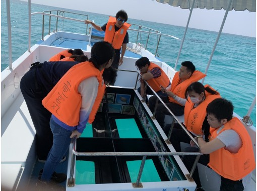 【魚のエサ付き!】グラスボートで糸満のサンゴを見に行こう!