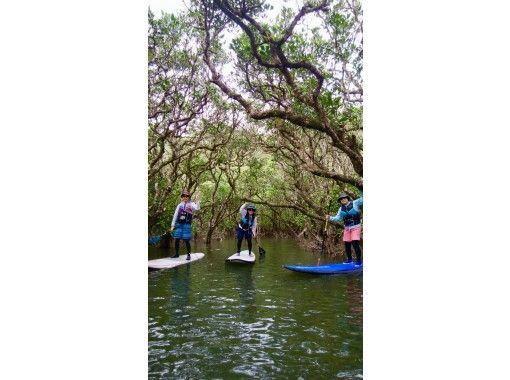 【鹿児島・奄美大島】マングローブSUP・冒険貸切ツアー