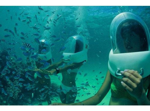 [电晕措施的优秀商店! ] Sea Walk & Blue Cave Experience 潜水喂食/照片资料服务の紹介画像