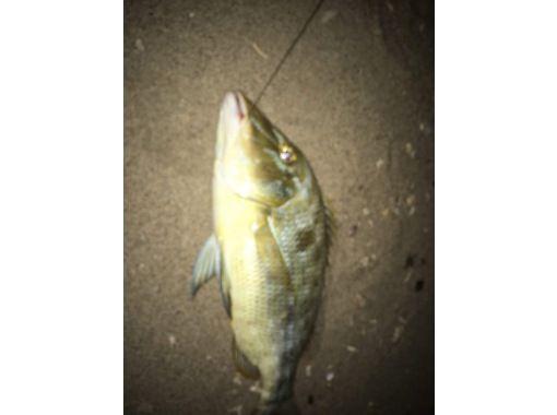 星空の下でビーチでのんびり、打ち込み釣り!!BBQ付