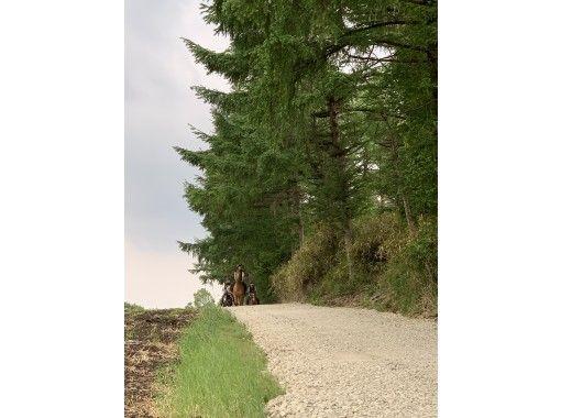 【栃木・那須】ホーストレッキング(外乗)プラン~那須高原を満喫(ジャージーBBQ付)