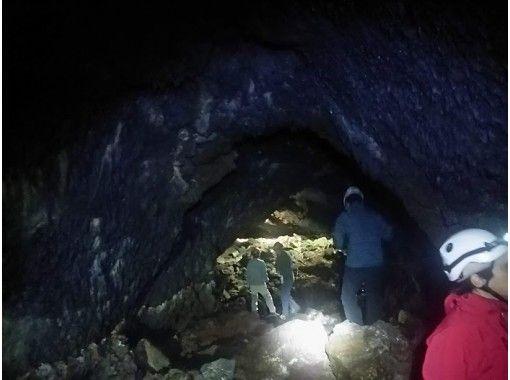 【山梨・鳴沢村】まるで別世界!ガイドと歩く神秘の森 青木ヶ原樹海&洞窟探検の紹介画像