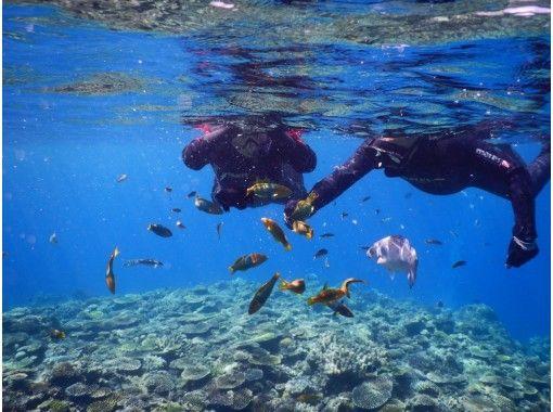 【冲绳/水纳岛/濑底岛】下午船浮潜1团限定免费拍照の紹介画像