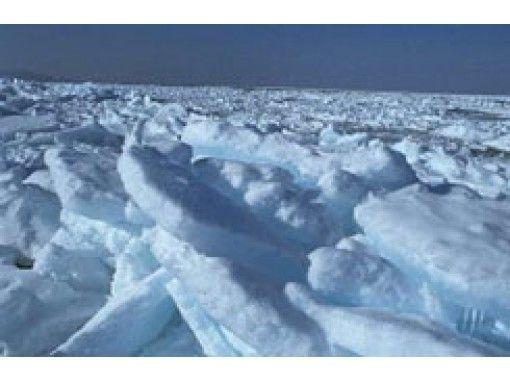 【北海道・札幌発着】流氷砕氷船『ガリンコ号II』乗船体験と海鮮丼に舌鼓