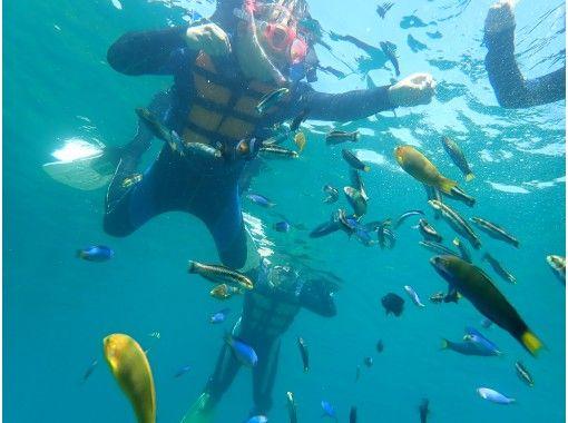 【高知・土佐清水】バナナボートで行く プレミアムビーチでゆったりシュノーケルの紹介画像
