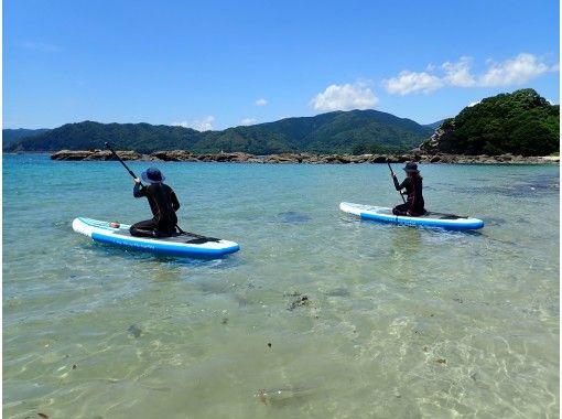 【高知・土佐清水】海域公園・竜串湾でスタンドアップバドルボートツアー