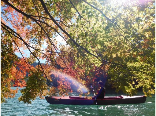 Gunma Prefectural Midori City ☆ You can ride from 3 years old! Lake Kusaki Canoe Tour ☆ Free photos during the tour!の紹介画像