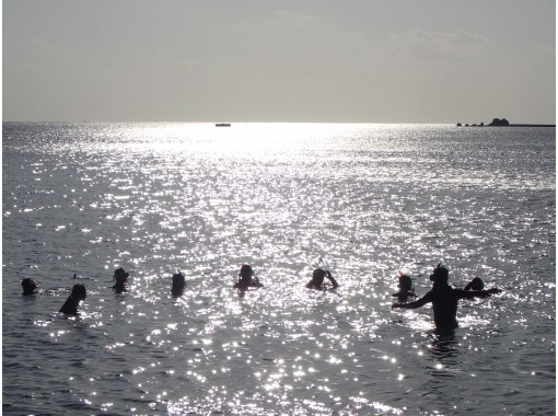 【スノーケルレッスン】はじめての方でも感動の海中世界を!安心の講習付スノーケリングツアーの紹介画像