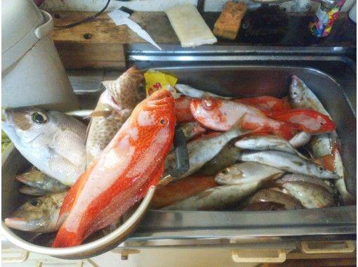 【奄美大島】手ぶら船釣り1日コース ※お弁当付き&居酒屋へ釣った魚を持ち込み可能!の紹介画像