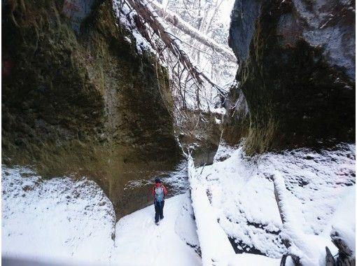 【ウィンタープログラム11月~3月】苔の回廊、楓沢の洞門ウィンタートレック