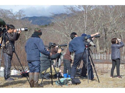 【栃木県・奥日光】オオワシ・オジロワシを始めとした野鳥をさがそう!【初心者大歓迎!1名様以上で催行】の紹介画像
