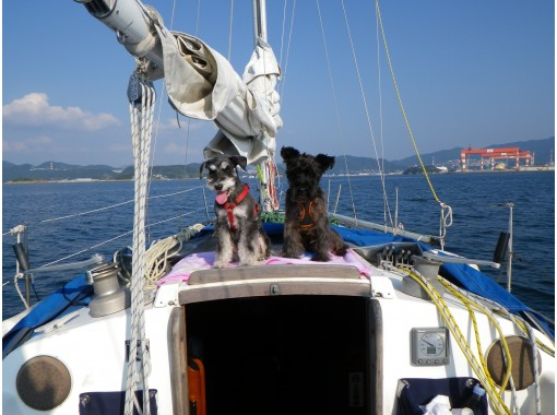 【Beppu】Be a day member of Beppu Yacht Club, and go sailing with us!