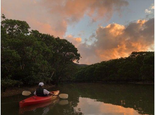 【鹿児島・奄美大島】サンセットマングローブカヌーと夜の森ツアー(240分)★貸切可★の紹介画像