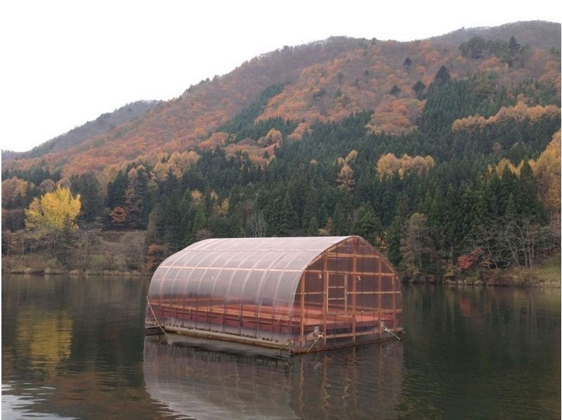 【長野・木崎湖】ワカサギ釣り1日じっくりパックの紹介画像
