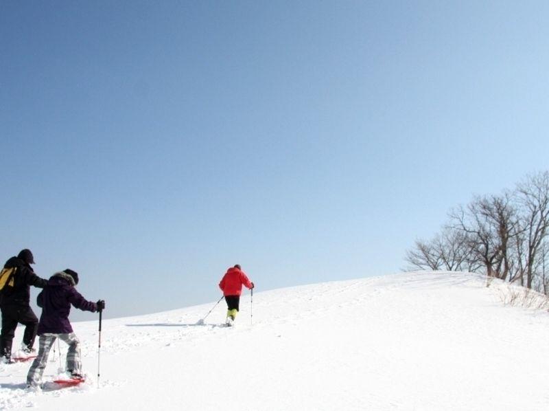 【兵庫・但馬】スノーシュー体験ツアー(半日コース)の紹介画像