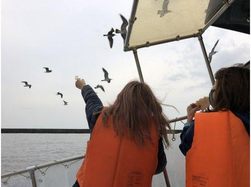 小樽蓝洞吸引力游轮Prolomarin *带屋顶的船。可以下雨了! ¥5,500日元の紹介画像